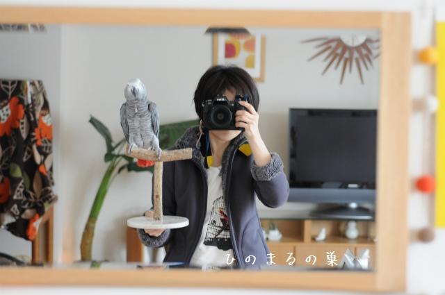 hinomarunosu2010100208.jpg