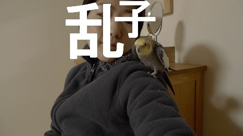 hinomarunosuhinomaru20110316_20110317111001.jpg