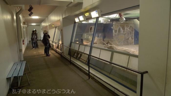 kyukaoku13.jpg