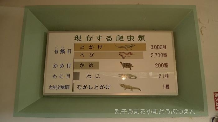 kyukaoku14.jpg
