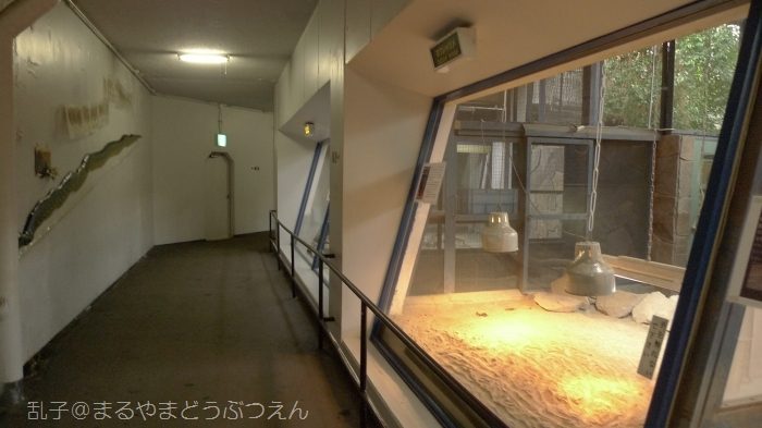 kyukaoku15.jpg