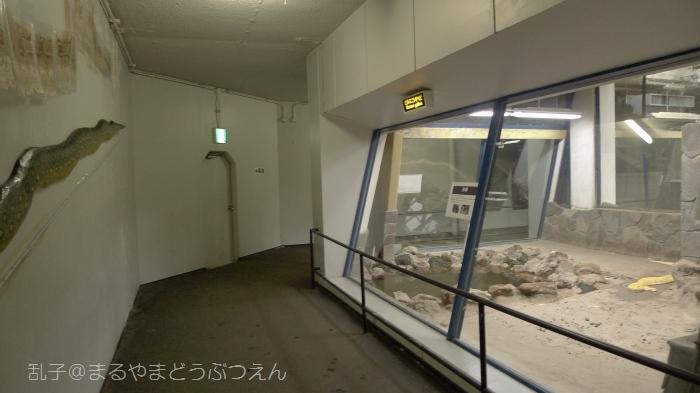 kyukaoku16.jpg