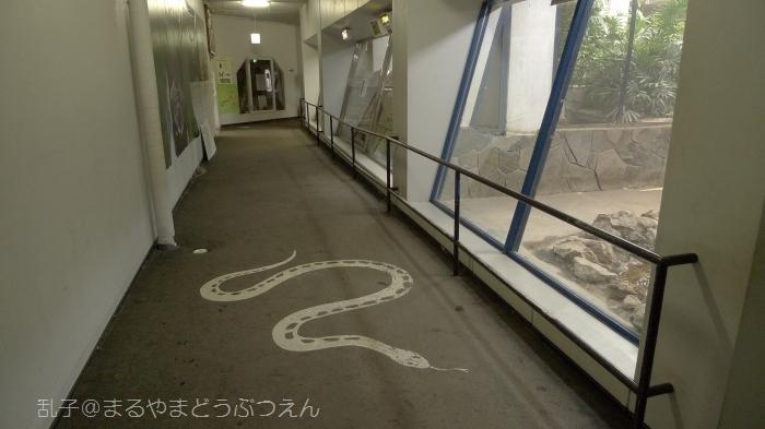 kyukaoku18.jpg