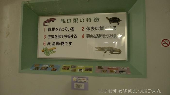 kyukaoku2.jpg