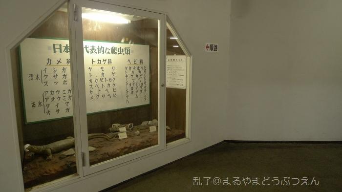 kyukaoku8.jpg