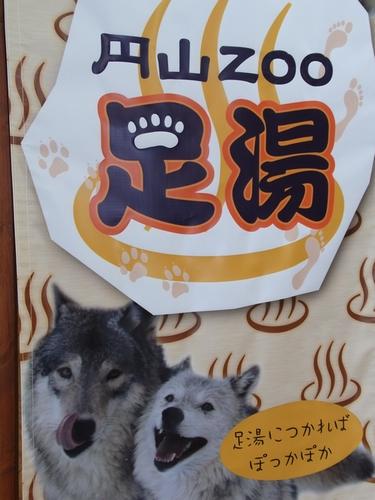 maruyamaashiyu.jpg
