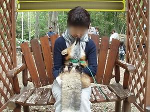 shinjinnameta02_20100309142456.jpg
