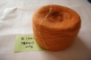 杏チタン媒染