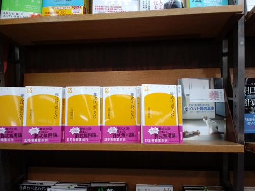 KINO本店