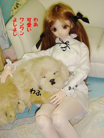 100726--dog-01-3.jpg