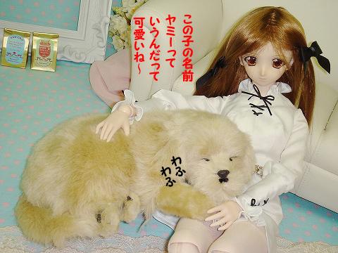 100726-dog-02-3.jpg