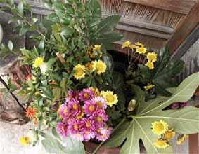 20091206_2.jpg