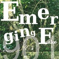 Emerging.jpg