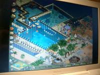 CIMG0242_convert_20100420123643.jpg