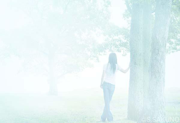 ____霧の印象IMG_5563