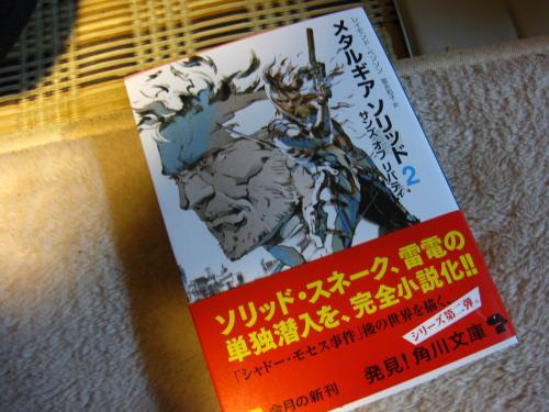 syukusyougonogazou100_20110326215919.jpg