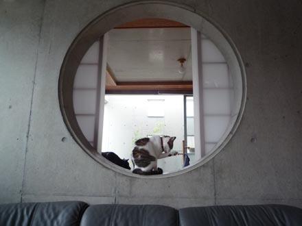 和室の丸穴の凛
