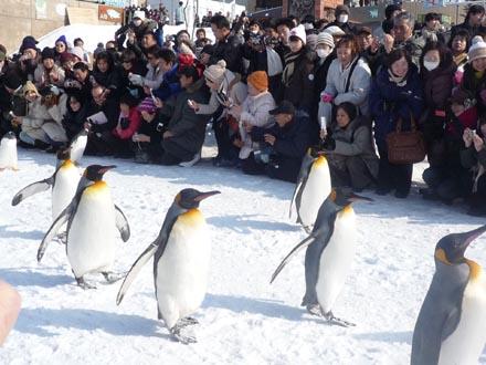 旭川動物園②