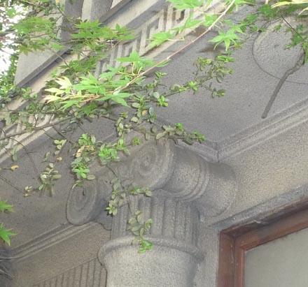 旧忍旅館⑤