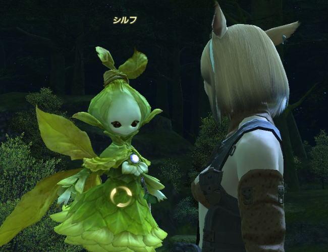 鎮守の森の妖精たち15