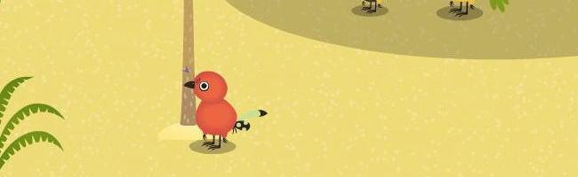 鳥のマイディーさん1