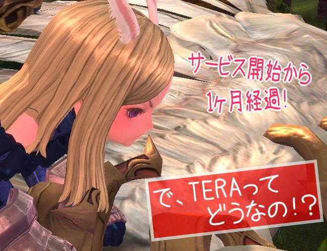 で、TERAってどうなの?