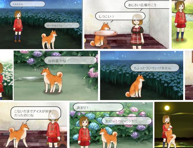 18年間生きた犬6