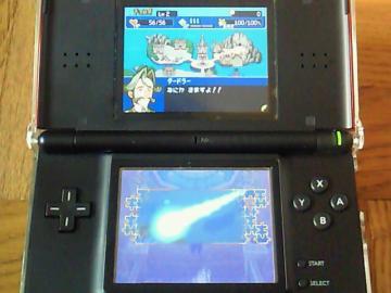 NEC_0513_20100708220640.jpg