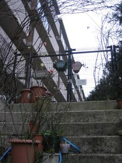 隣の庭への避難経路2