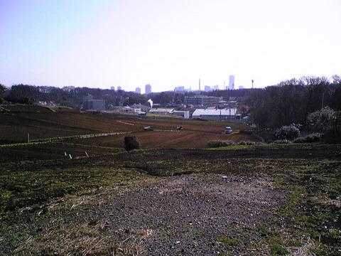 散歩コースの景色