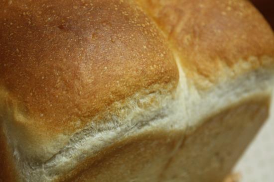 ホシノ食パン1