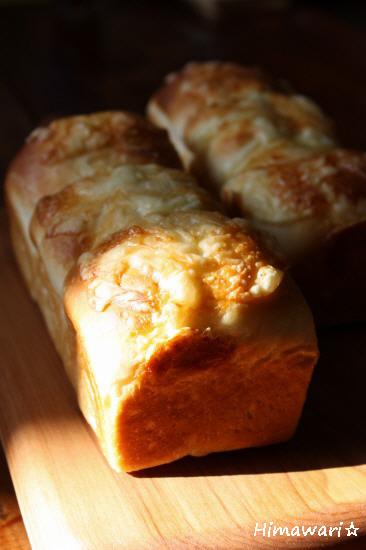 ココチーズ1