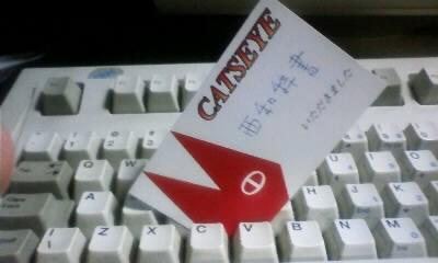 catsCard.jpg