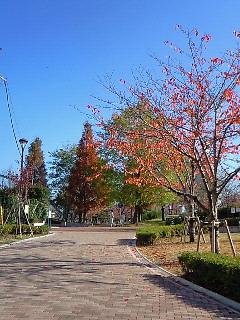 200812030946000公園入り口
