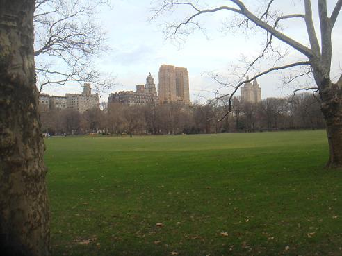 NEW YORK 068
