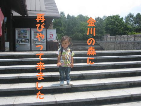 IMG_5828_1.jpg