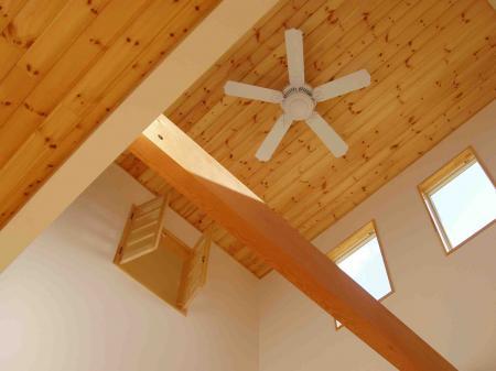 MYsama ceiling