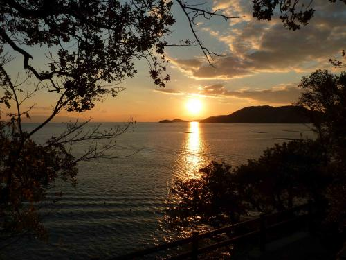 emotiona sunset high position