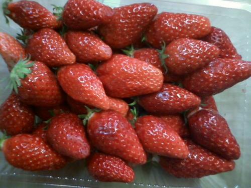 strawberry flush