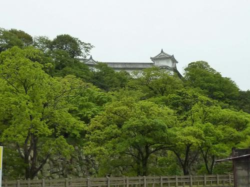 westside of castle