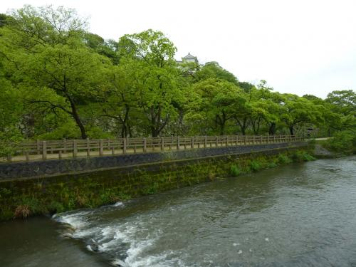 castle of himeji and river