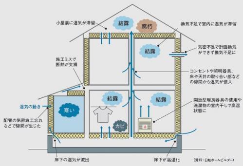 model001.jpg