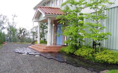 tamano@rainy.jpg