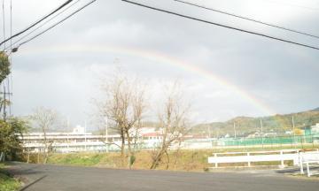 2011-11-20 14.25.03