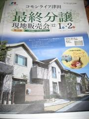 sekisuitirashi2.jpg