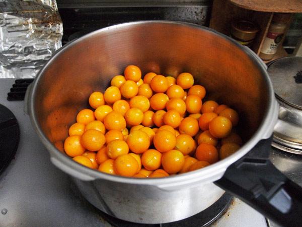 圧力鍋で金柑を煮ました