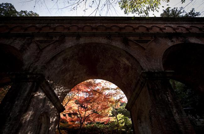京都紅葉-3