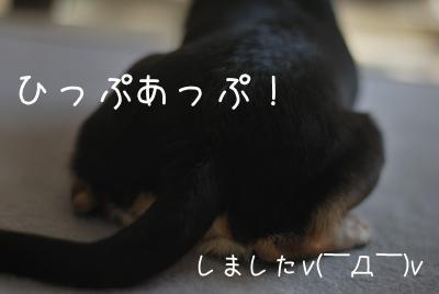 DSC_5148.jpg