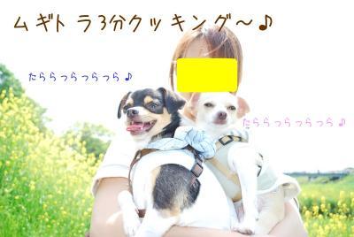 DSC_5685.jpg