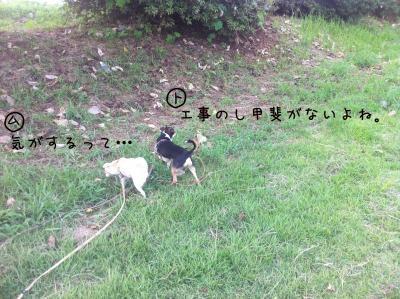 IMG_0090_01.jpg